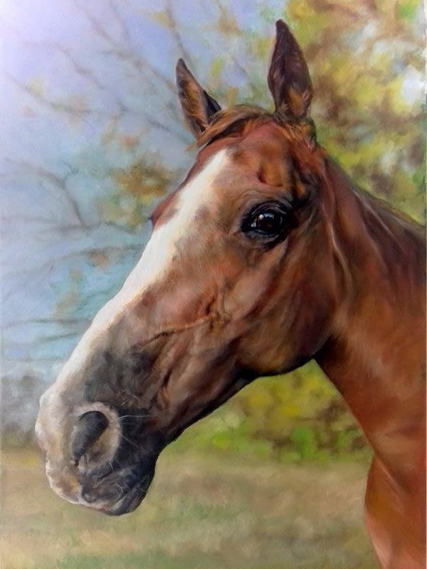 Chestnut horse portrait in oils