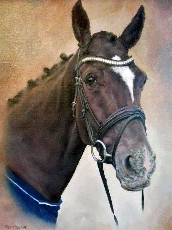 Dark bay horse portrait in oils