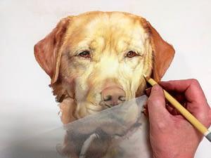 artist painting a dog portrait