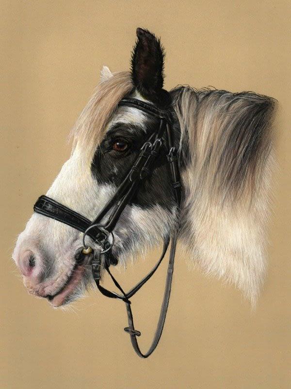 Horse portrait in pastel