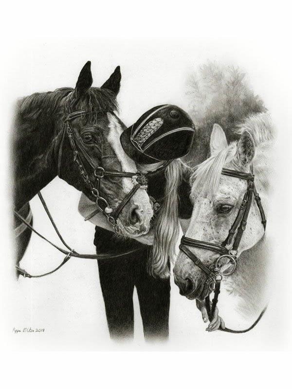 Horse portrait in pencil
