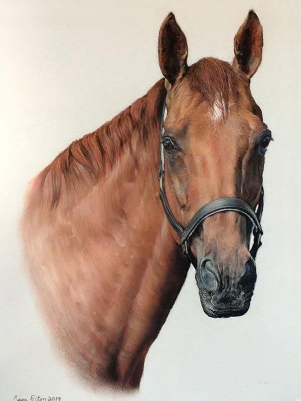 Chestnut horse portrait in pastel