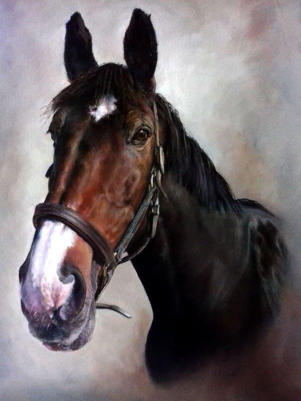 Bay horse portrait in oils